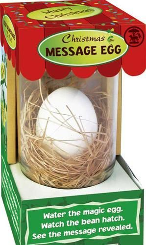 Message Egg - Merry Christmas